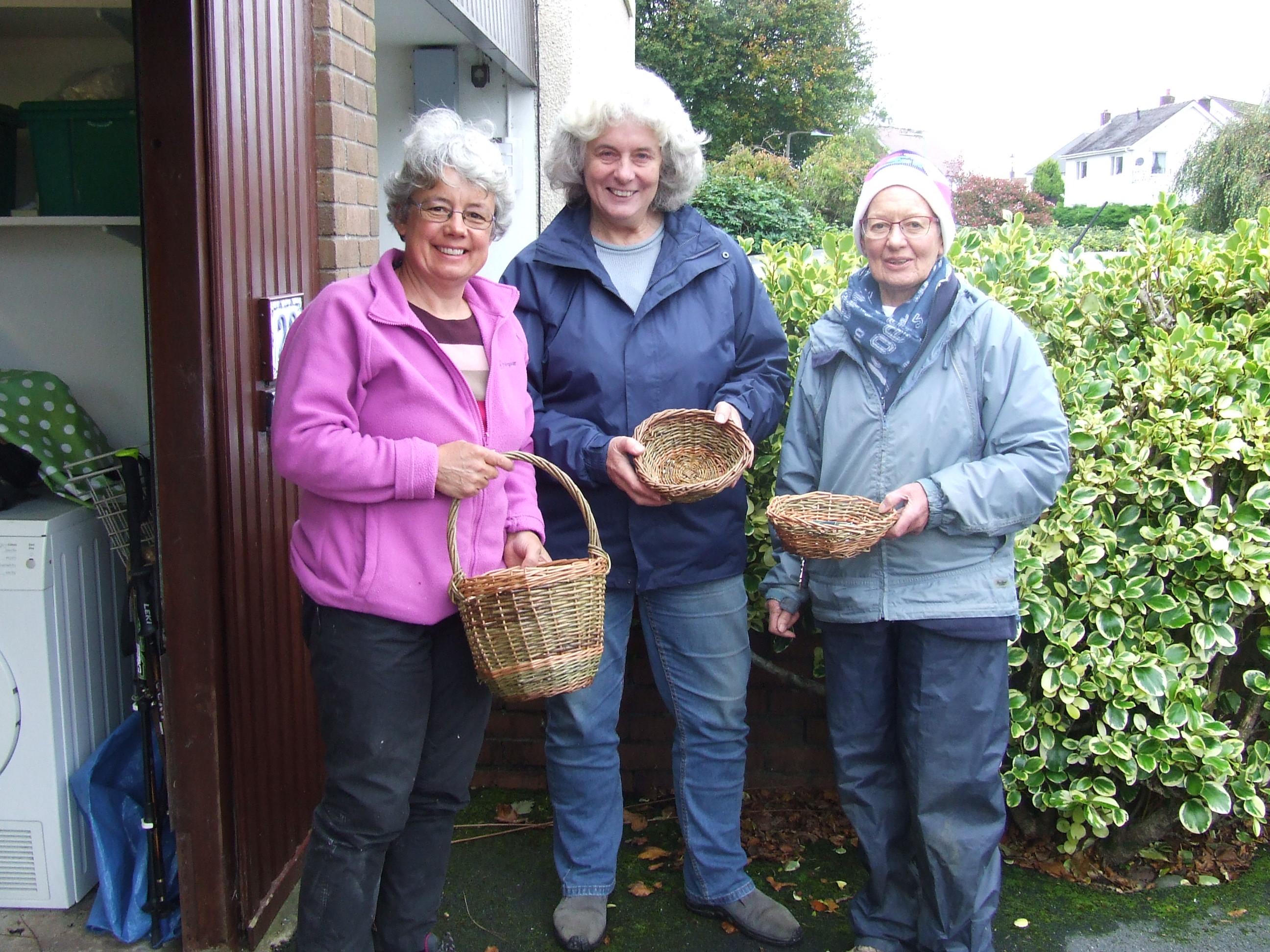 Make a Willow Basket