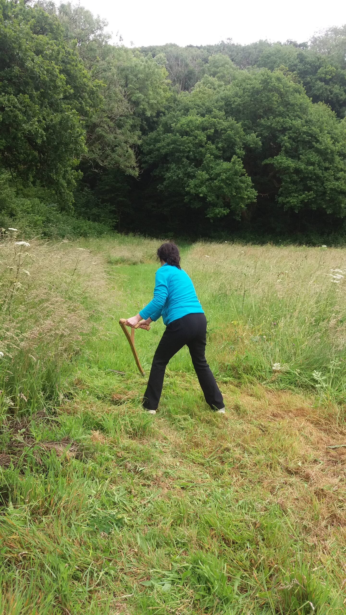 Scything 1 Day Course