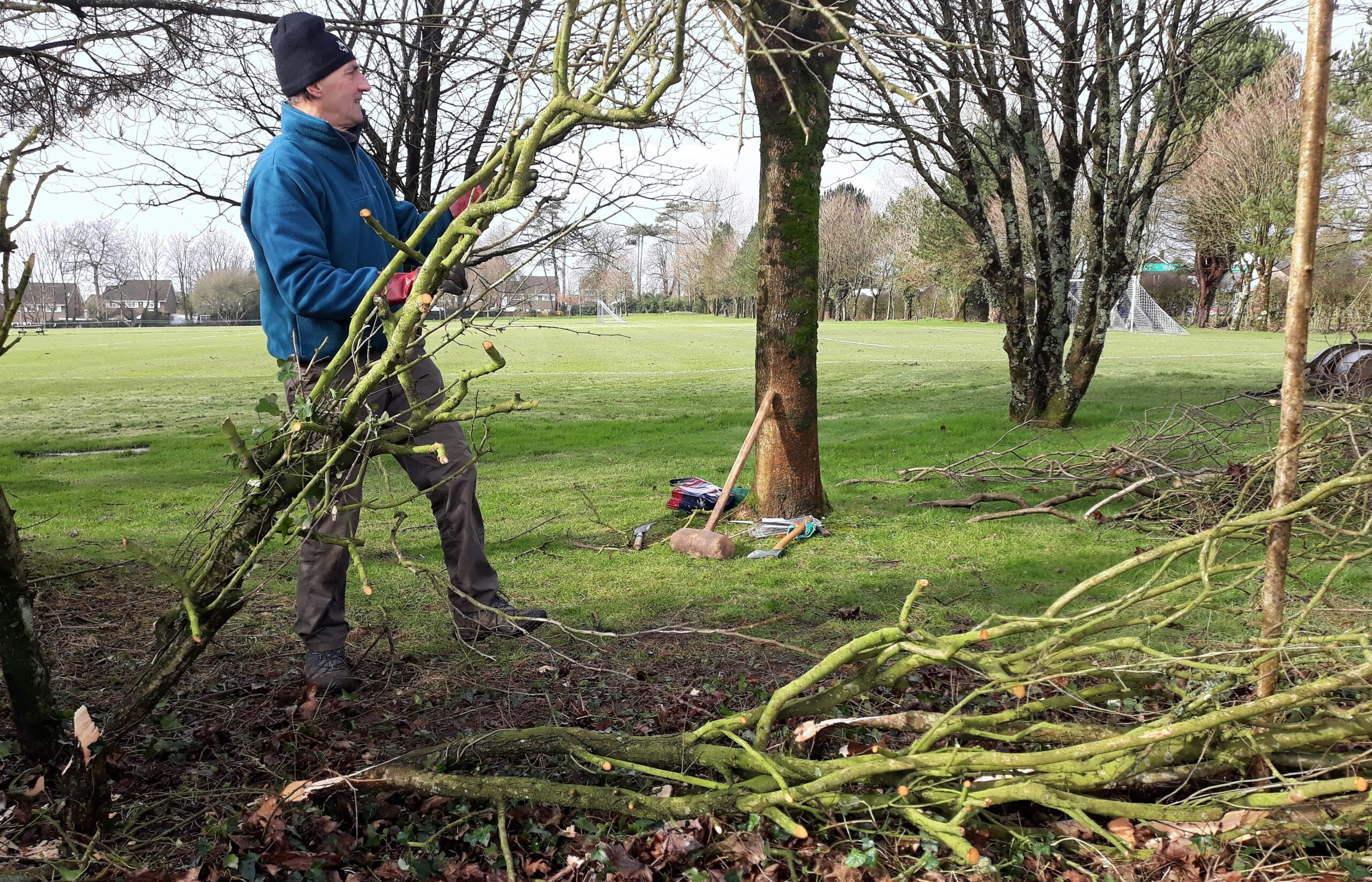 Hedgelaying Course