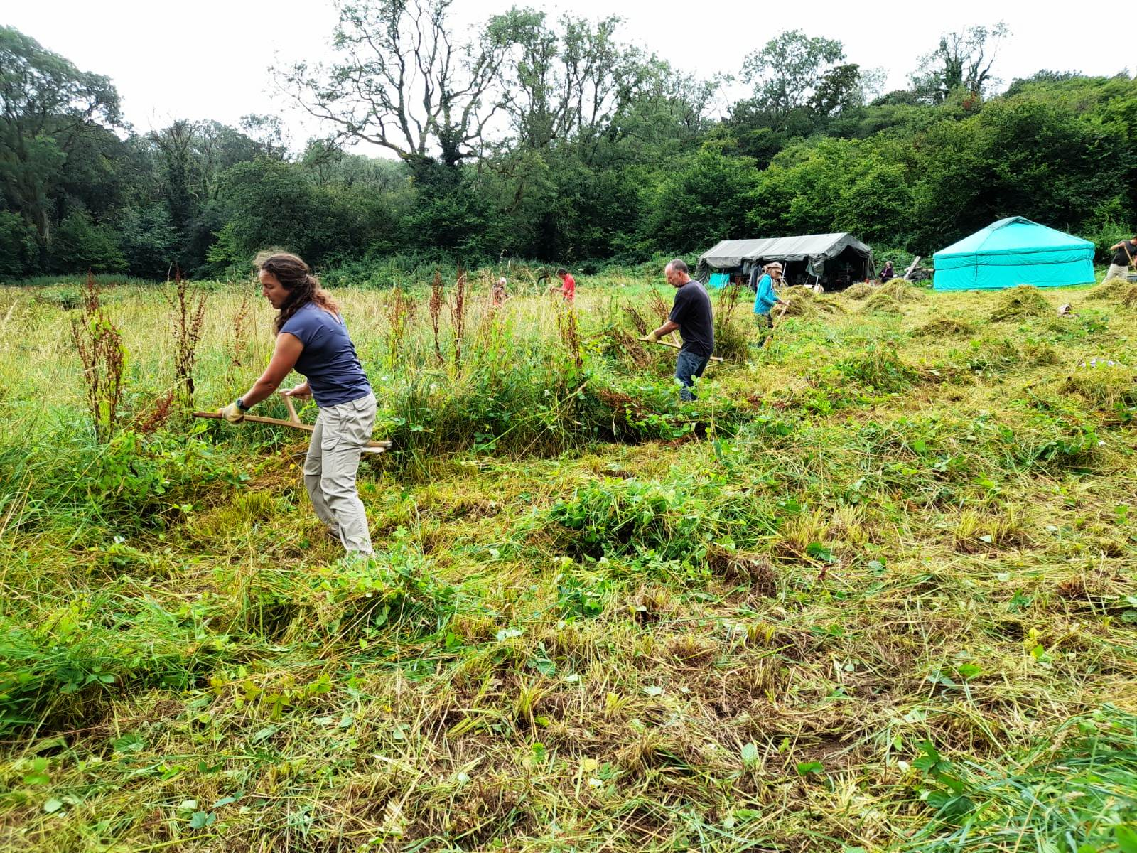 Taking Climate Action in our Community: Learning to Scythe in Swansea